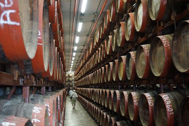 In der Rumfabrik Arehucas