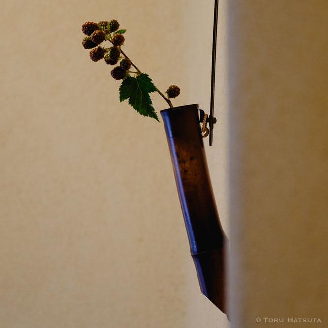 古人の鉈痕が残る煤竹花入にブラックベリーの実を。竹工芸家 初田徹 作