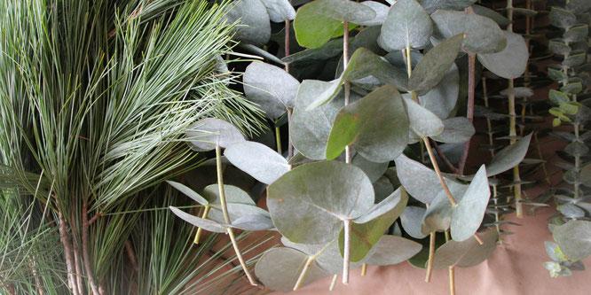 Adventskranz Eukalyptus Seidenkiefer