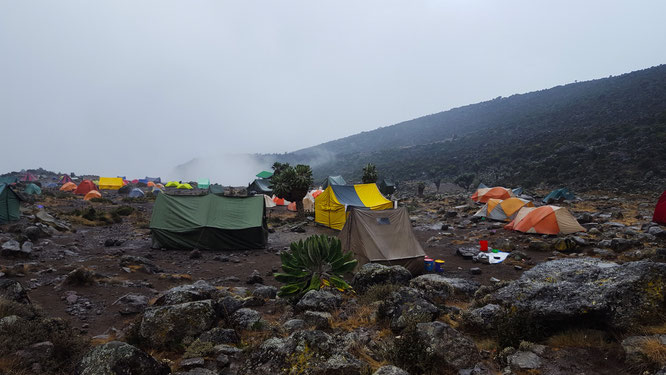Kilimanjaro, Lemosho, Tansania, Afrika