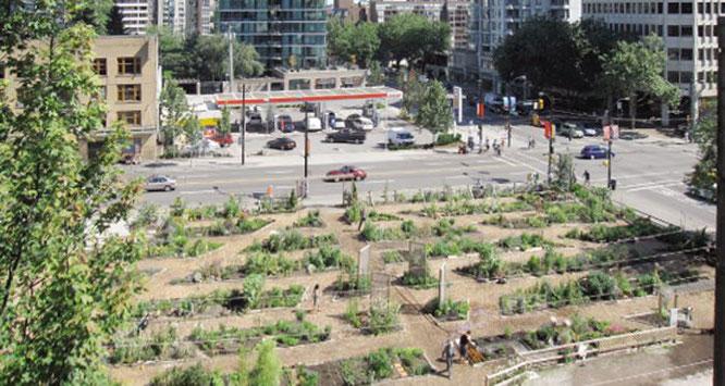 Urban Gardening NRW