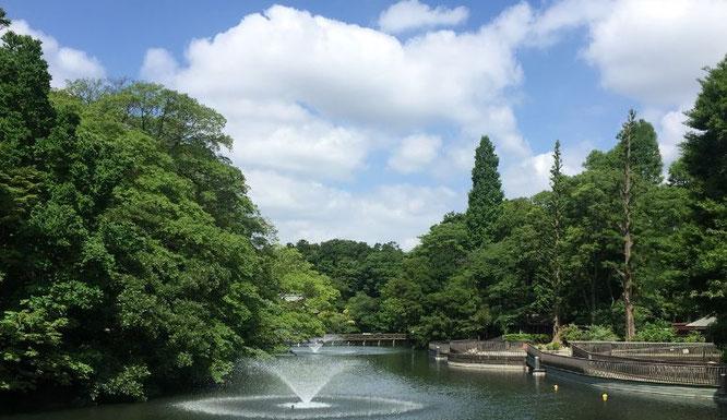 井の頭恩寵公園