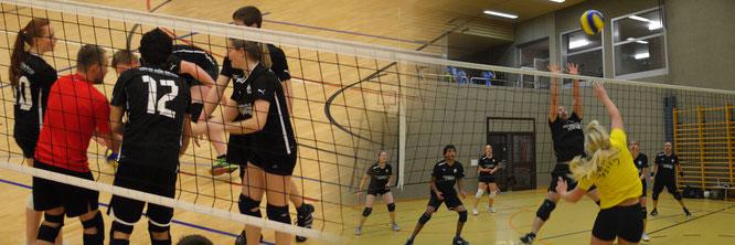 impressionen volleyball 2014