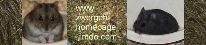 """Ein """"Klick"""" öffnet die Zwergen-Homepage!"""