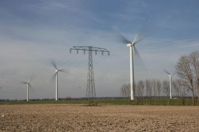 Windmühlen bei Passow