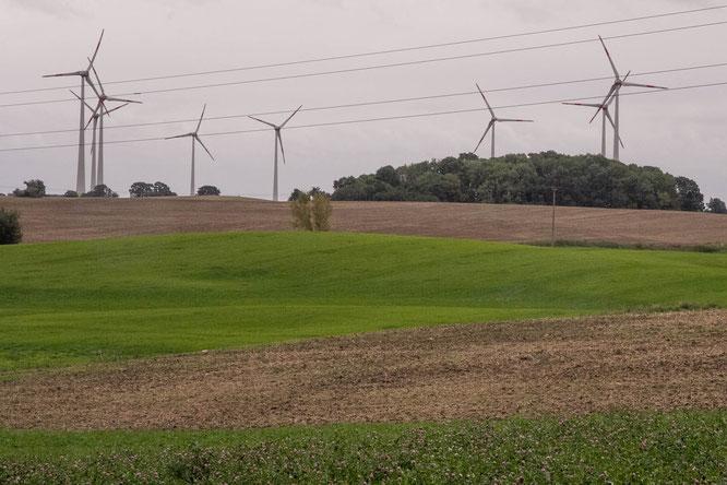 Windmühlen bei Neuendorf, aufgenommen am Ortsausgang Neuendorf Richtung Pokrent