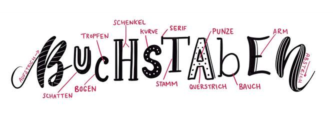 Handlettering, Lettering, Einführung, Anatomie Buchstaben, Typografie Erklärung