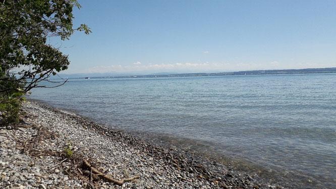 Urlaubsseminar am Bodensee