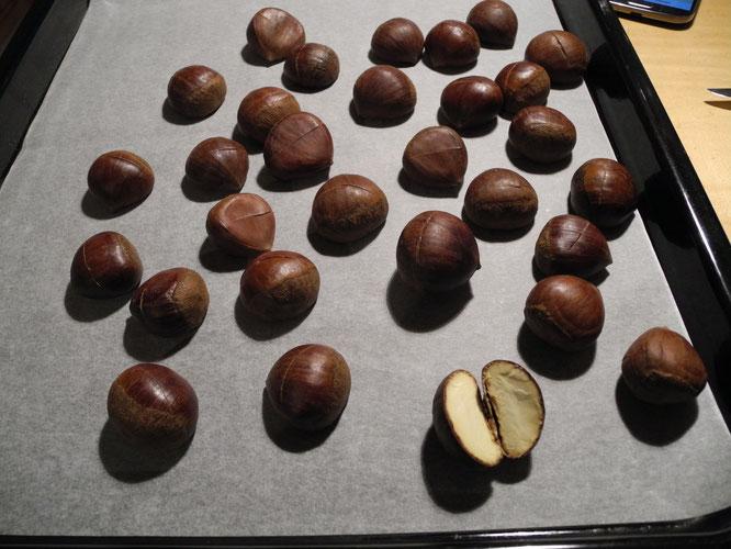 chestnut ofen