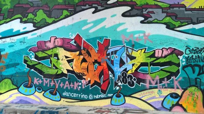 Farbenstarker und Mur-bezogener Graffito-Ausschnitt der Arbeit des Grazer Spray-Künstlers Neo von 2009. © Reinhard A. Sudy