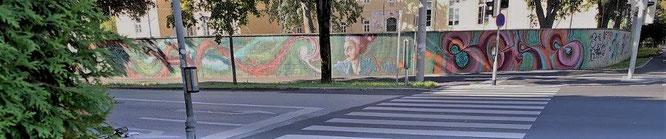 Mein erster Blick auf die lange Graffiti-Wand am Straßeneck Kalvariengürtel-Hackhergasse, Graz. © 2019 Reinhard A. Sudy