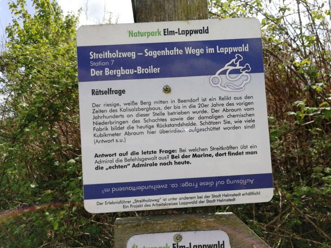 Camper mit Hund in Beendorf