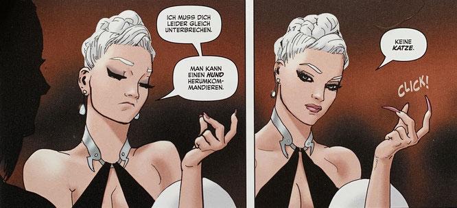 Black Cat: Auf Raubzug / Panini (Marvel) / 124 Seiten / 14,99 Euro