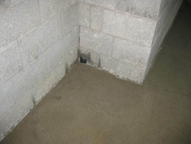 Chapes en caves complètement humides