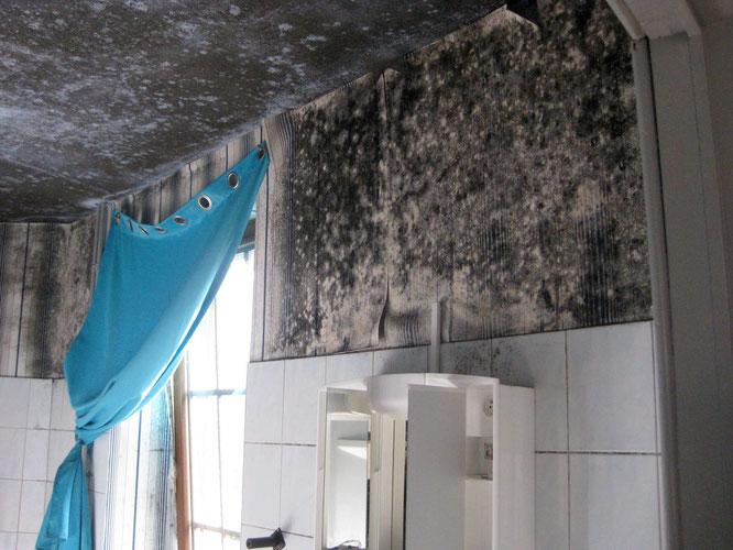 Le mur et le plafond au dessus du lavabo sont plein de moisissures.