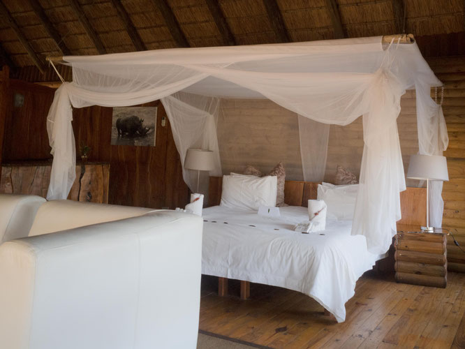 karongwe river lodge | private game reserve | südafrika