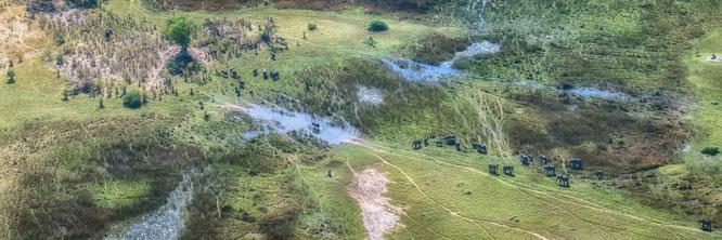 das atemberaubende okavango delta in botswana