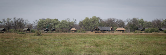 sable alley camp - khwai konzession botswana
