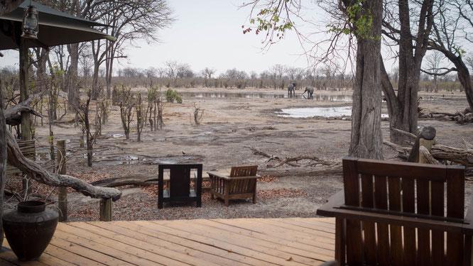 hyena pan camp khwai konzession botswana