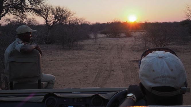 sonnenuntergang | game drive | kapama private game reserve | südafrika