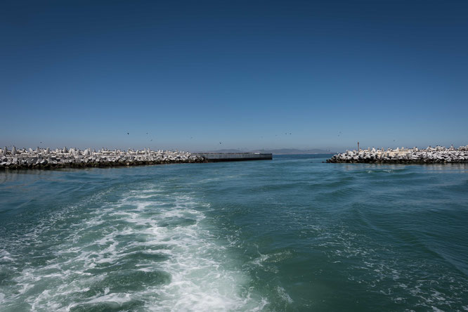 robben island cape town - murray's bay harbour