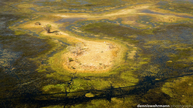 birds eye view okavango delta botswana