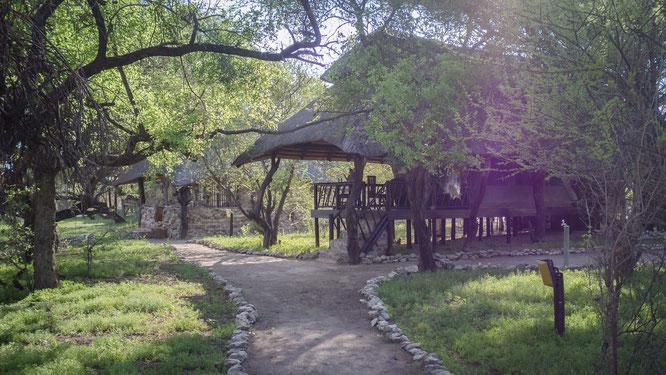 edo`s camp kalahari botswana