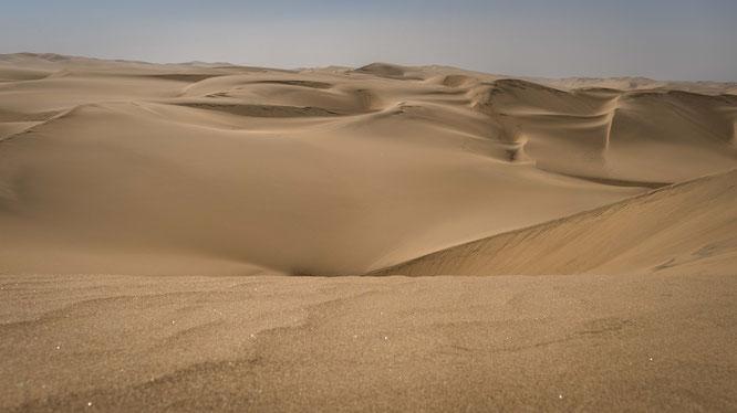 Die Dünen der Namib verändern sich stetig dank des Windes, ein lebendiges Ökosystem trotz der lebensfeindlichen Bedingungen.