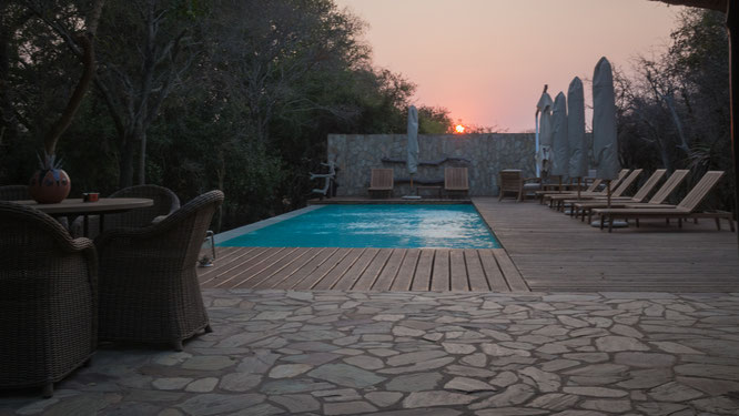 kapama buffalo camp | private game reserve | südafrika
