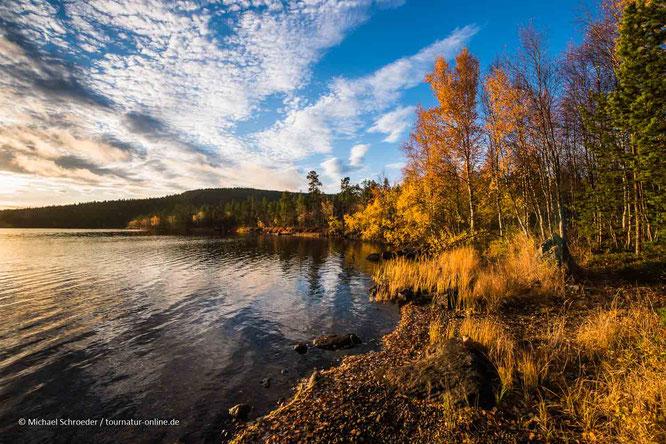 Den Indian Summer in Finnland nennt man Ruska oder Ruska-Aika