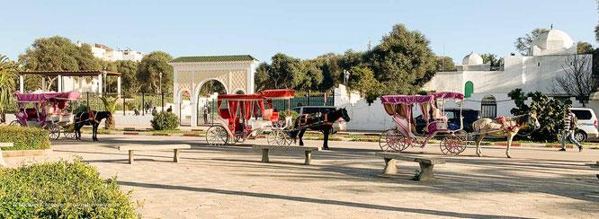 Pferdekutsche an der Strandpromenade von Asilah in Marokko