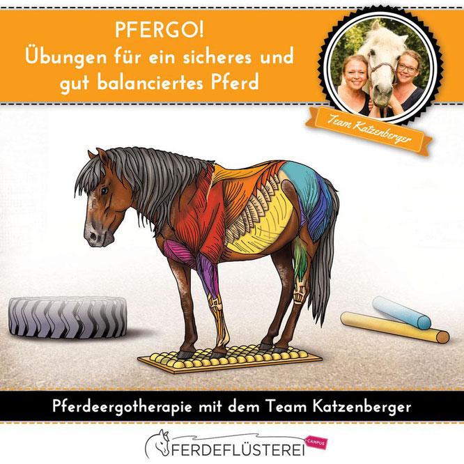 *PFERGO! DER Online-Videokurs für ein sicheres und gut balanciertes Pferd!