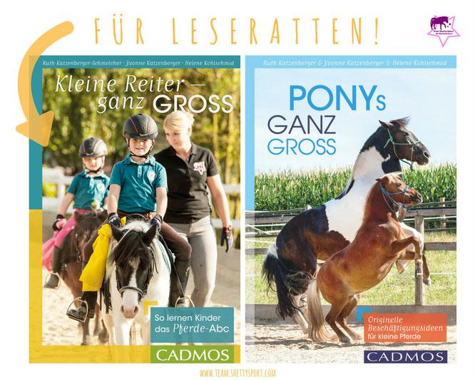 Kleiner Reiter ganz groß - so lernen Kinder das Pferde-Abc, Ponys ganz groß - Originelle Beschäftigungsideen für kleine Pferde