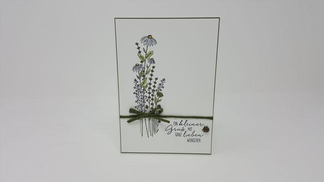 Libellengarten, Marienkäfer, Blumen, Geburtstag, Karte, Minikatalog, Frühling, Stampin Up, Stempelkiste