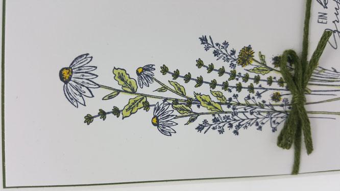 Libellengarten, Blends, Marienkäfer, Wünsche, Leinenband, waldmoos, Blumen, Geburtstag, Karte, Minikatalog, Frühling, Stampin Up, Stempelkiste