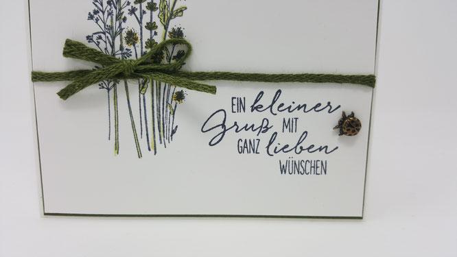 Libellengarten, Marienkäfer, Wünsche, Leinenband, waldmoos, Blumen, Geburtstag, Karte, Minikatalog, Frühling, Stampin Up, Stempelkiste