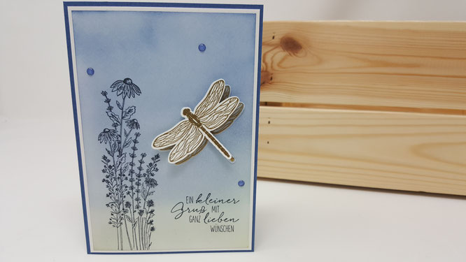 Libellengarten, Libelle, Glückwunsch, Blumen, Geburtstag, Karte, Minikatalog, Frühling, Stampin Up, Stempelkiste