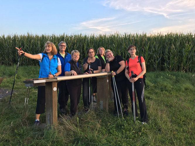 Sichtlich Spass hatten die Teilnehmer des 2017er Nordic-Walking-Kurses; Bild: TSV