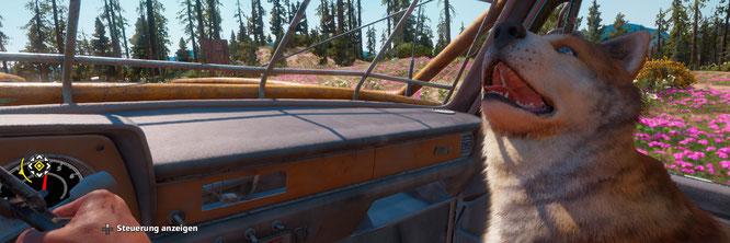 """Ihm ergeht es besser als den meisten Tieren in """"Far Cry: New Dawn"""": Hund Timber"""
