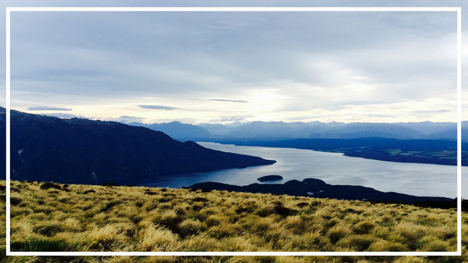 Neuseeland. Südinsel. Kepler Track. Fjord. Great Walk. Wanderlust.
