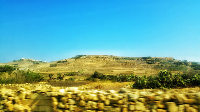 Пейзаж Мальты из окна автобуса. (с) Дамир Байманов