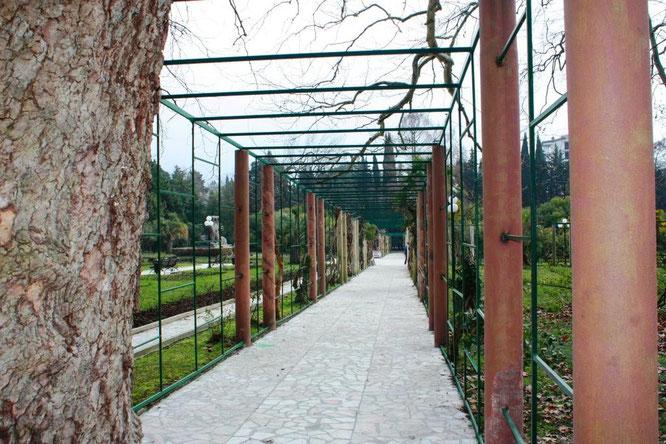 Это коридор, который окутывают кусты розы. Представьте себе, какое волшебное место будет здесь летом, когда они зацветут. (с) Дамир Байманов
