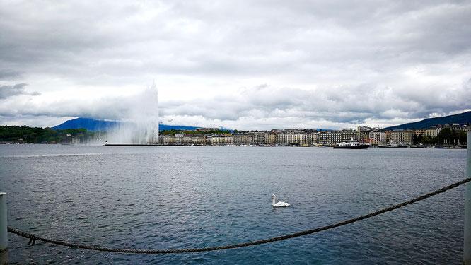 (с) Дамир Байманов. Самый большой фонтан в Женеве был построен в конце 18 века.