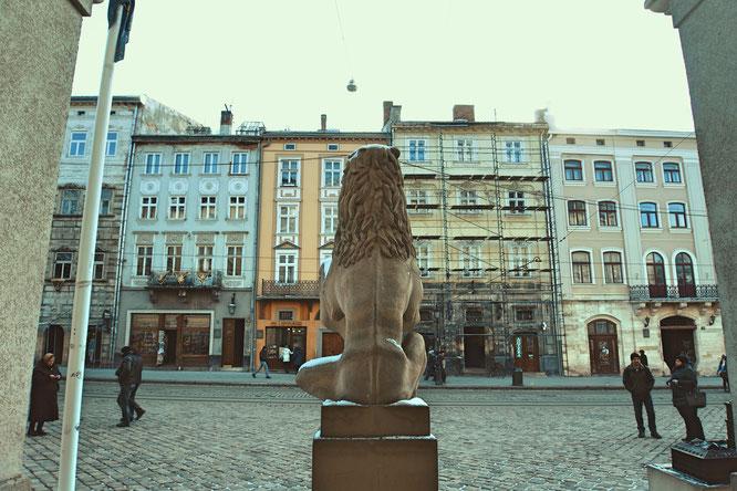 Львы держат герб Львова перед городской ратушей