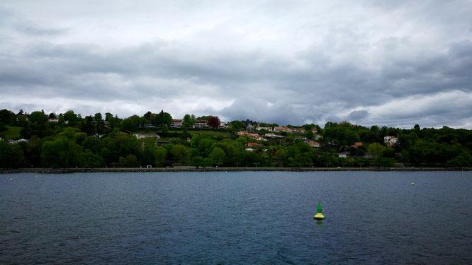 (с) Дамир Байманов. Виллы с бассейнами в непосредственной близости от Женевского озера.