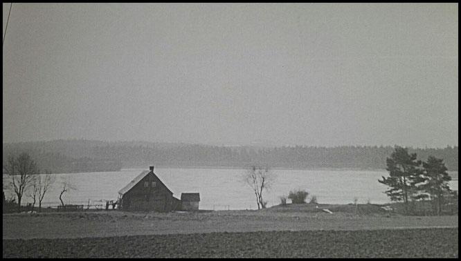 das alte Teichwärterhaus