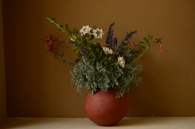 small sunny garden, desert garden, in a vase on monday, iavom, amy myers, photography, ceramics, earthenware, pottery, artemisia, powis castle, lantana, white, chuparosa, justicia, californica