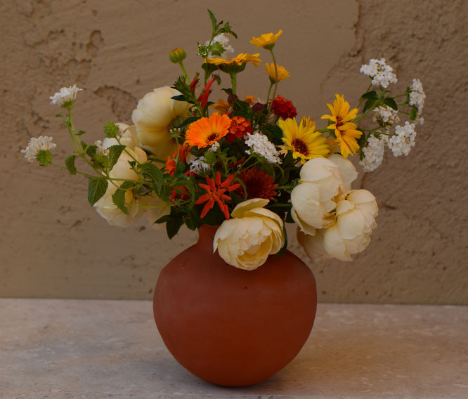 in a vase on monday, iavom, monday vase, small sunny garden, desert garden, amy myers, photography, garden blog, wollerton old hall, rose, calendula, lantana