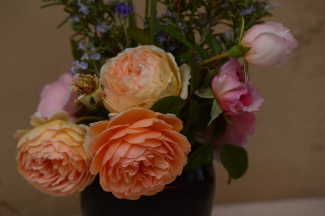the Monday vase, rose Crown Princess Margareta