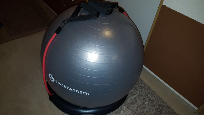 Sportastisch Workoutball